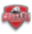 cougars-logo-large (1).png