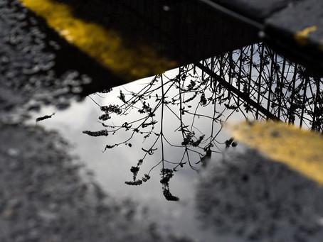 Reflection as radical