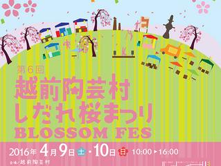 第6回越前陶芸村しだれ桜まつりが4月9日(土)・10日(日)に開催されます