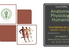 Anatomie et Physiologie humaines : 2 cours en Hiver 2019... Inscrivez-vous vite !