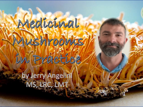 Medicinal Mushrooms conference… if you want to incorporate them in your practice, book the date now