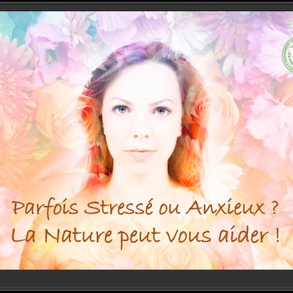 Parfois Stressé(e) ou Anxieux(se) ? La nature peut vous aider !