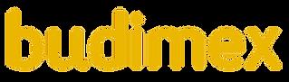 Logo_Budimex.png