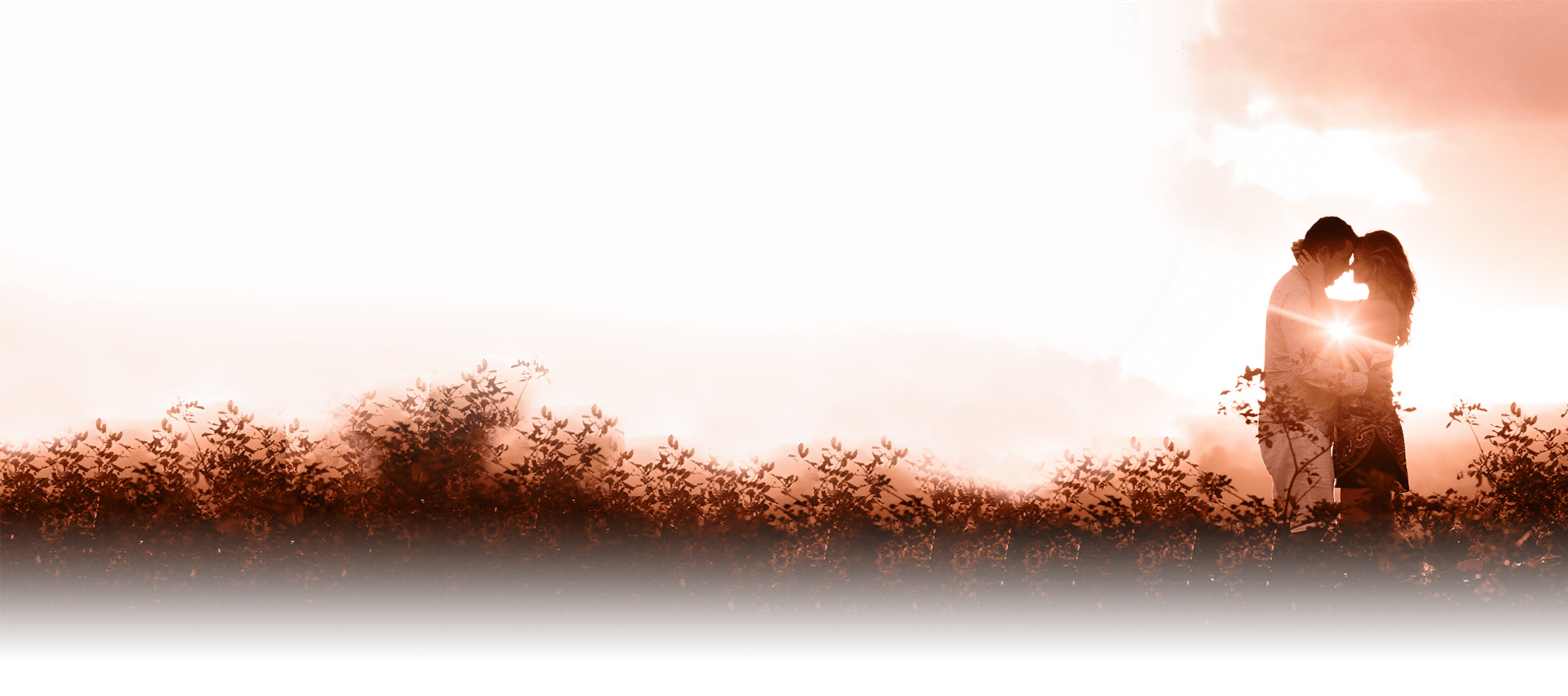 background12-min.png