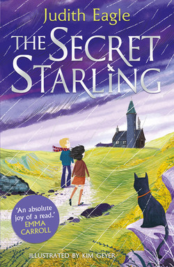 The Secret Starling | Judith Eagle and Kim Geyer