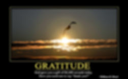 Gratitude William Ward