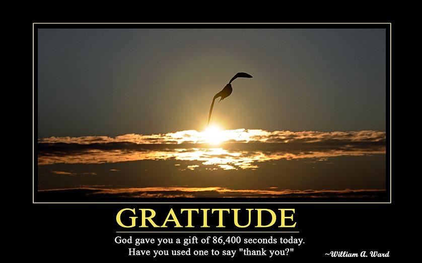 Gratitude William Ward