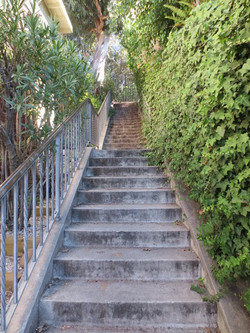 Whitley Steps 4