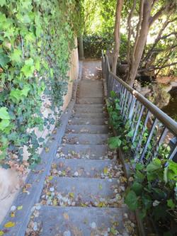 Whitlet Steps 2