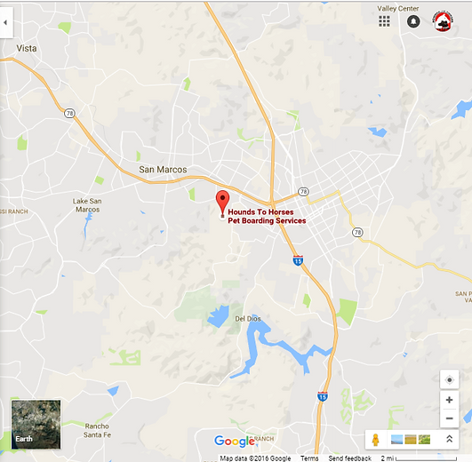 Google Map of Hounds To Horses