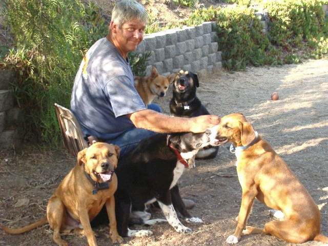 Bill and the dogs