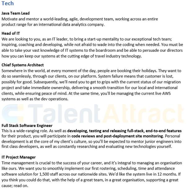 Tech Fields Job Description