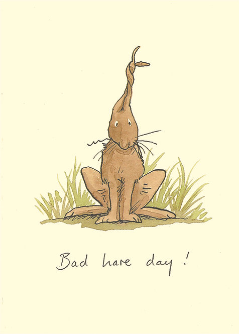 Bad hare day!