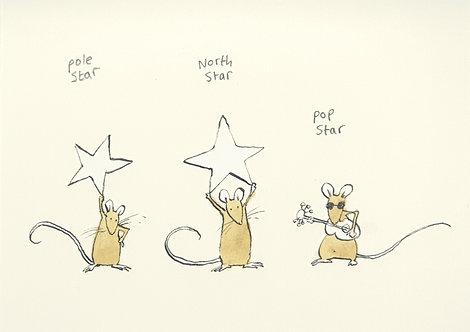 Pole Star, North Star, Pop Star