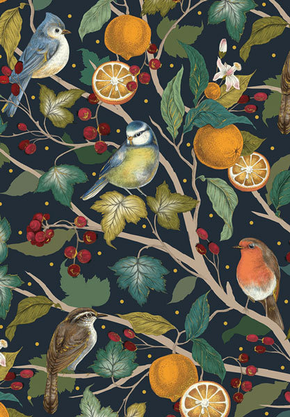 Birds and Oranges