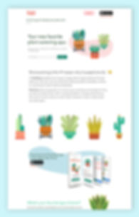 Plant Party |Amanda Loftis Design