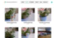 Screen Shot 2020-02-13 at 10.52.17 PM.pn