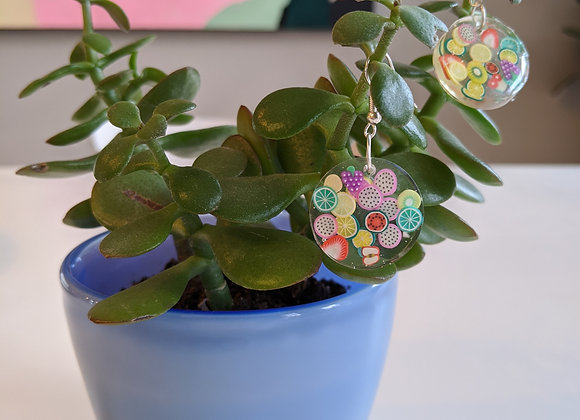Fruity Slice Circle Earrings