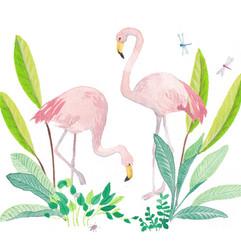 Jungle Flamingos