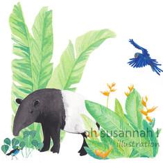 Jungle Tapir