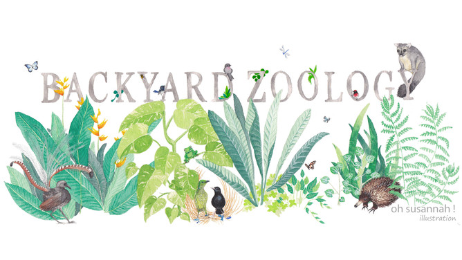 Backyard Zoology