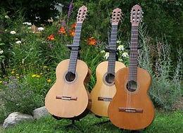 La guitare au Sud, concert commenté
