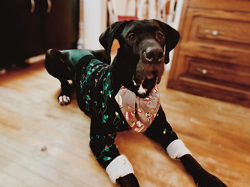 Med Reversible Dog Bandana W/Collar Pocket