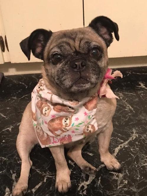 Small Reversible Dog Bandana W/Collar Pocket