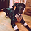 Thumbnail: Large Reversible Dog Bandana W/Collar Pocket