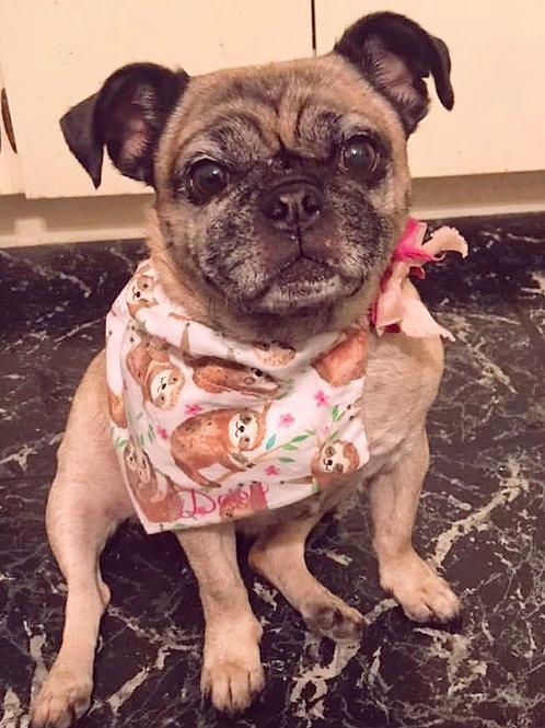 Small Dog Bandana W/Collar Pocket