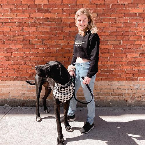 Spring Dog Bandana W/Collar Pocket