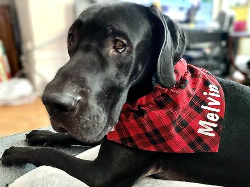 Large W/Name Dog Bandana