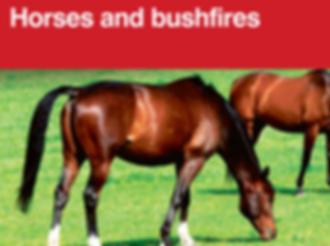PIC - Horses and bushfires.png