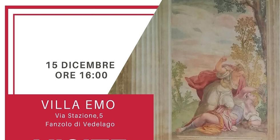 Visite guidate a Villa Emo - Dicembre