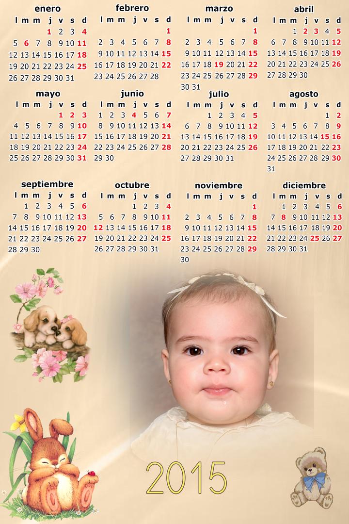 calendario con muchas fotos