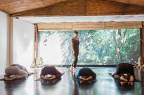botannix-yoga-31_websize.jpg