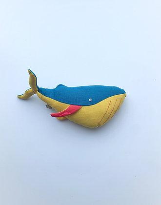 Adventurous Whale