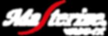Masterize Logo