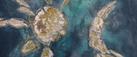 vlcsnap-2021-02-15-12h12m27s512.png