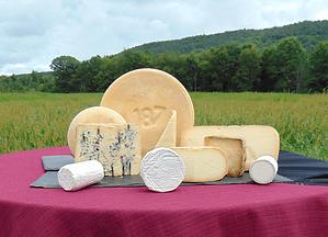 Amish Cheeses