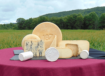 best-cheeses (1).png