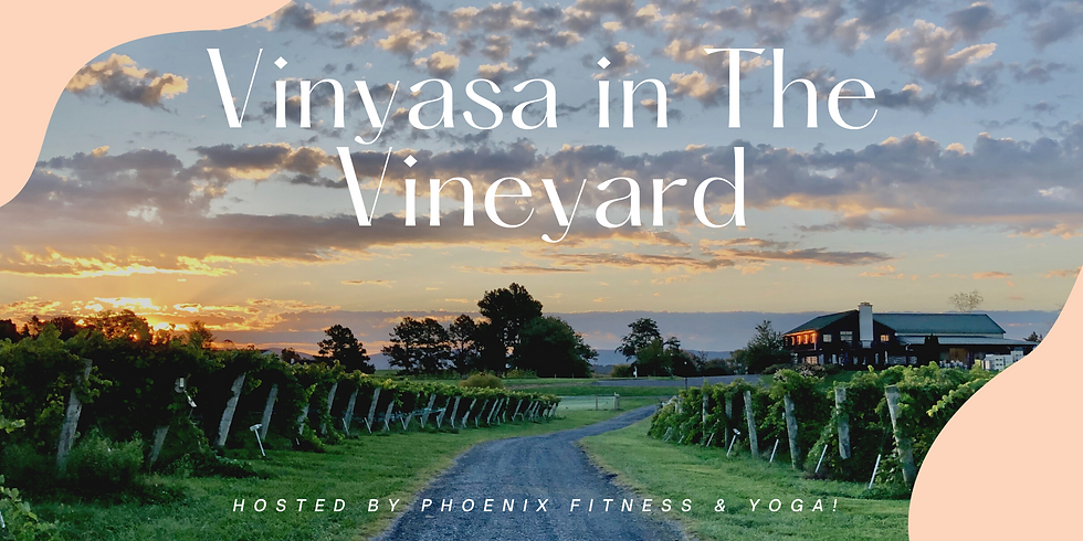 Vinyasa in the Vineyard  10-11:15 am