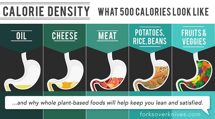 calorie-density-png.png