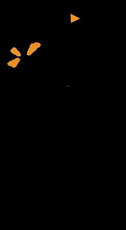 Wezelsoor