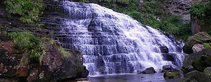 サガリバナや季節のイベント紹介。西表島の観光情報がたっぷり。