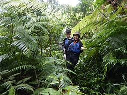 西表島のジャングルをトレッキングで探検。ナーラの滝カヌーツアー自然体験へ。
