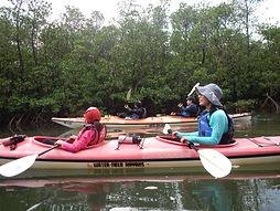 シーカヤックでマングローブの川へ!アダナデの滝でキャニオニングツアー体験。