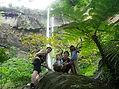 西表島で人気のピナイサーラ半日ツアー