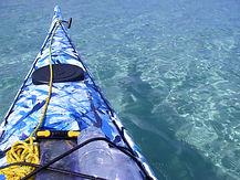 カヤックで西表島の観光体験。初心者も安心の半日ツアーから人気の滝やサガリバナツアーまで。