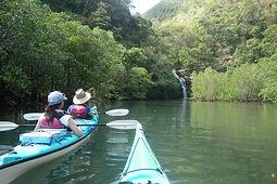 シーカヤックで海亀ウォッチング!水落の滝カヌーツアーで自然体験へ。